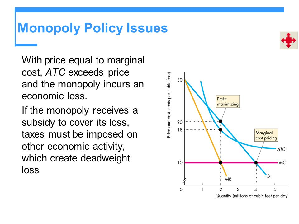 Monopoly Policy Issues