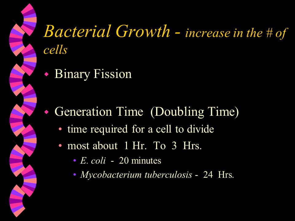 Bacterial Growth - increase in the # of cells