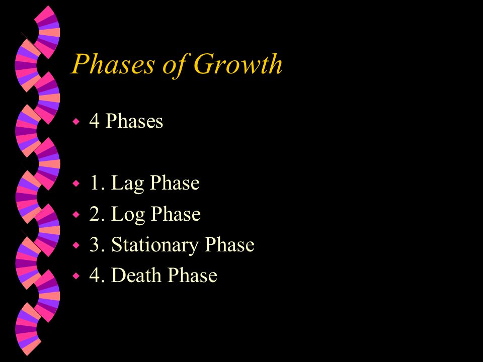 Phases of Growth 4 Phases 1. Lag Phase 2. Log Phase