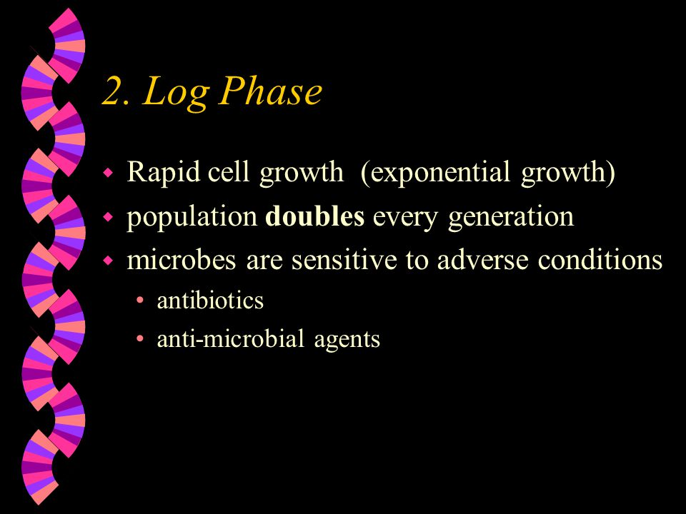 2. Log Phase Rapid cell growth (exponential growth)