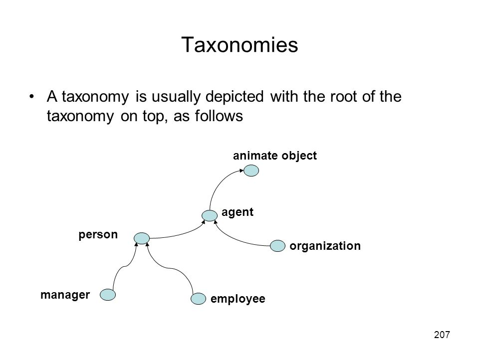Taxonomies A taxonomy is usually depicted with the root of the taxonomy on top, as follows. animate object.