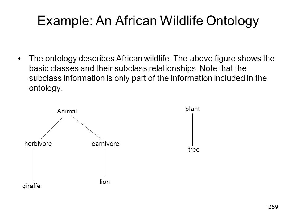 Example: An African Wildlife Ontology