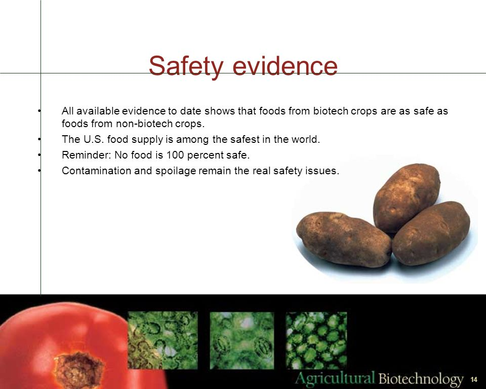 Safety evidence All available evidence to date shows that foods from biotech crops are as safe as foods from non-biotech crops.