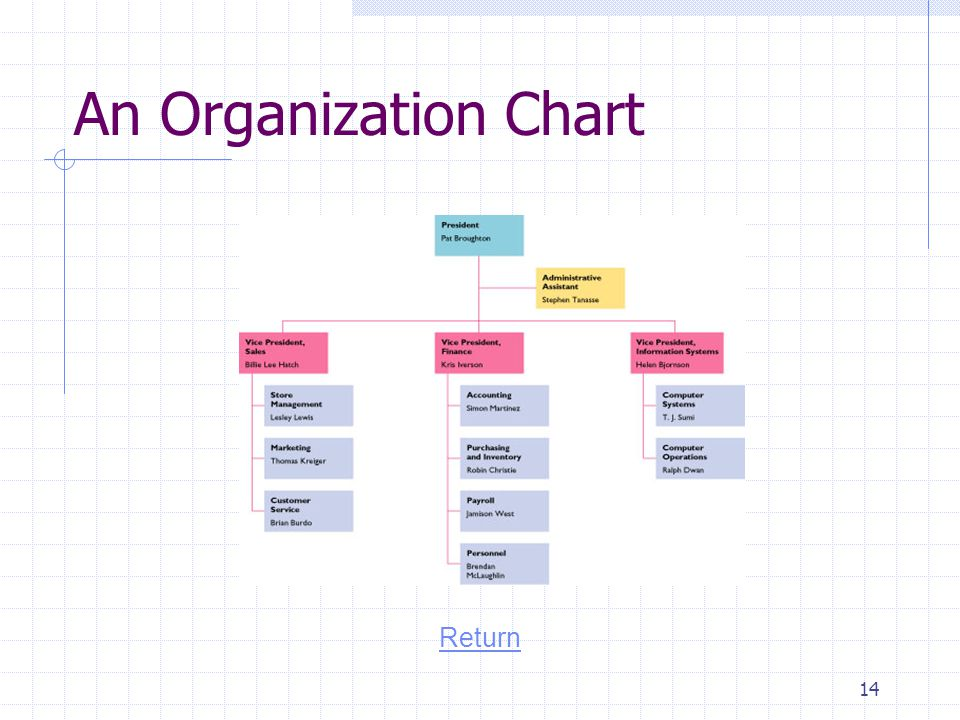 An Organization Chart Return