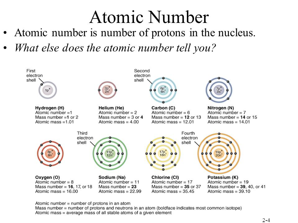 an introduction to the definition of matter which consists of atoms held together by electromagnetic Protons consist of 2 up quarks and 1 down quark held together by the gluon and neutrons consist of 2 down quarks and 1 up quark held together by the gluon this is what gives them their properties and identity.