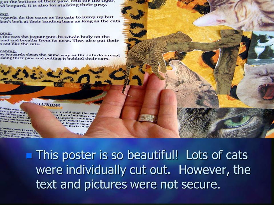 Careful Gluing This poster is so beautiful. Lots of cats were individually cut out.