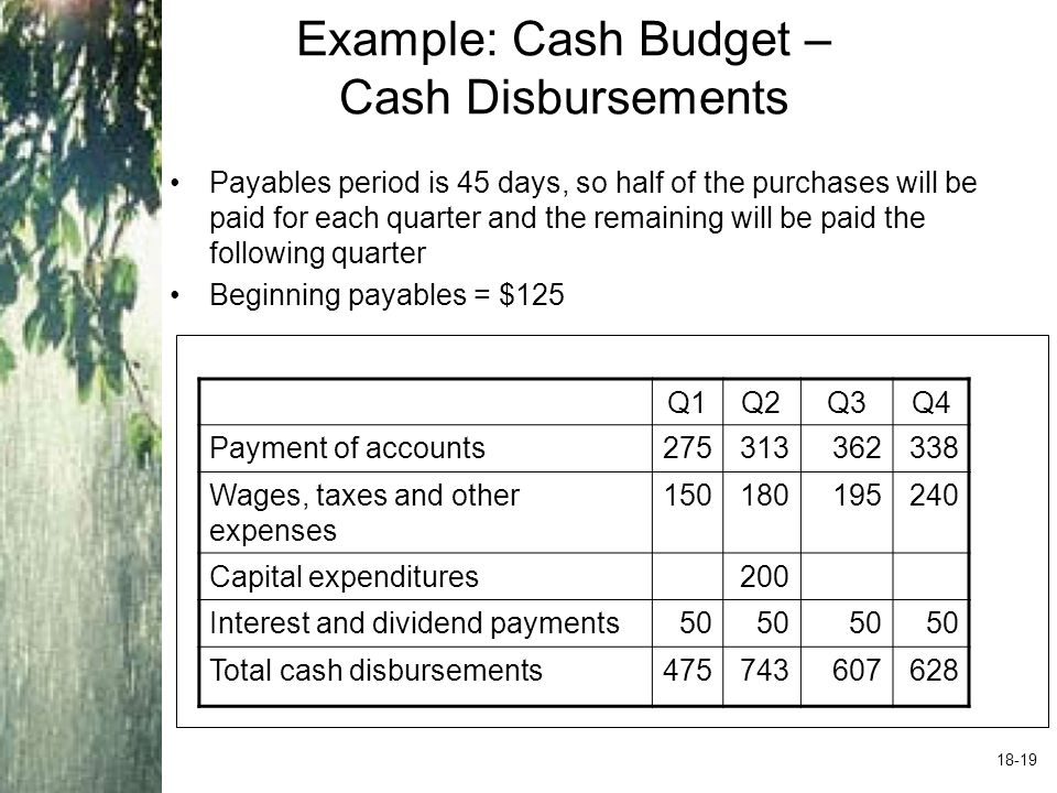 Example: Cash Budget – Net Cash Flow and Cash Balance