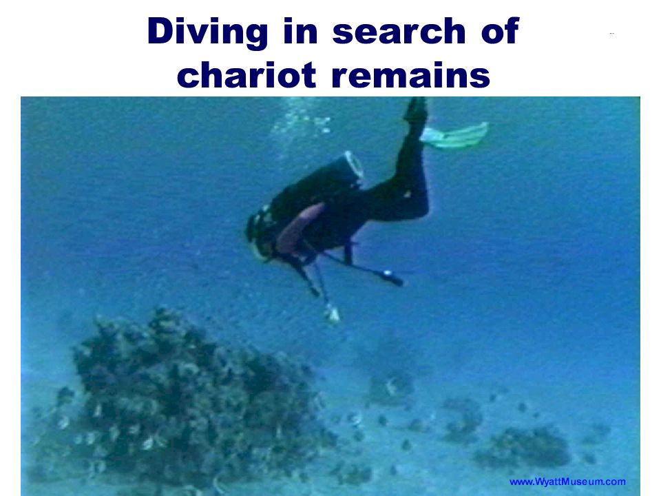 Diving in search of chariot remains
