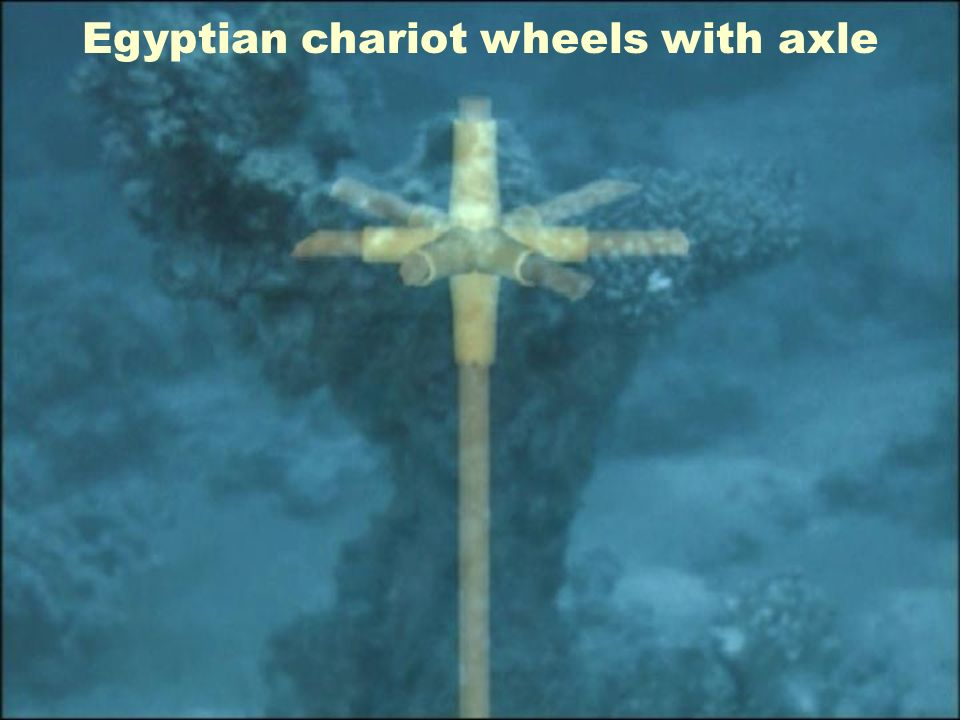 Egyptian chariot wheels with axle