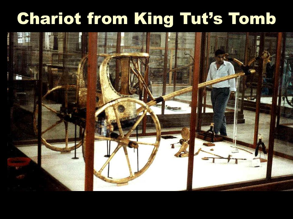 Chariot from King Tut's Tomb