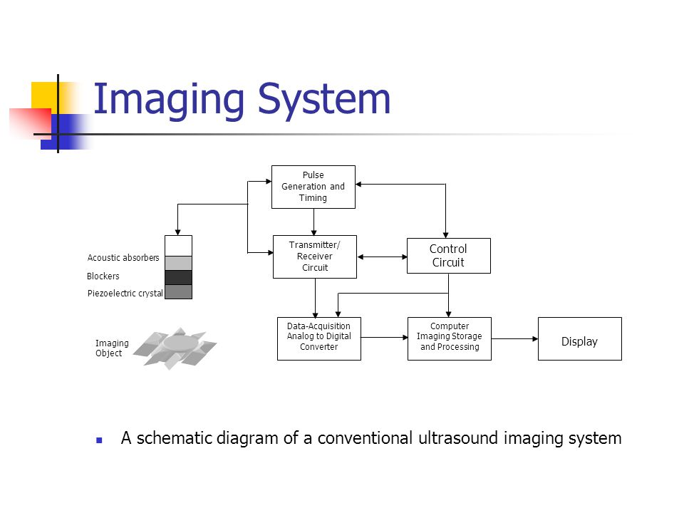 Ultrasound Imaging Atam Dhawan  - ppt video online download