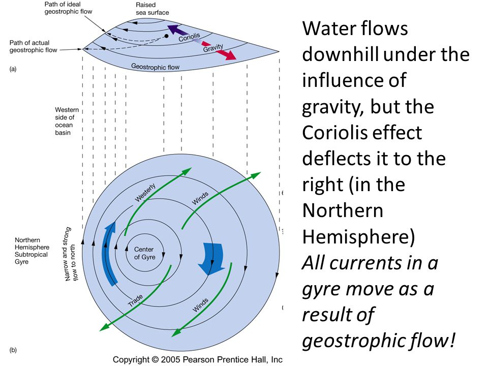 Water flows downhill under the influence of gravity, but the Coriolis effect deflects it to the right (in the Northern Hemisphere)