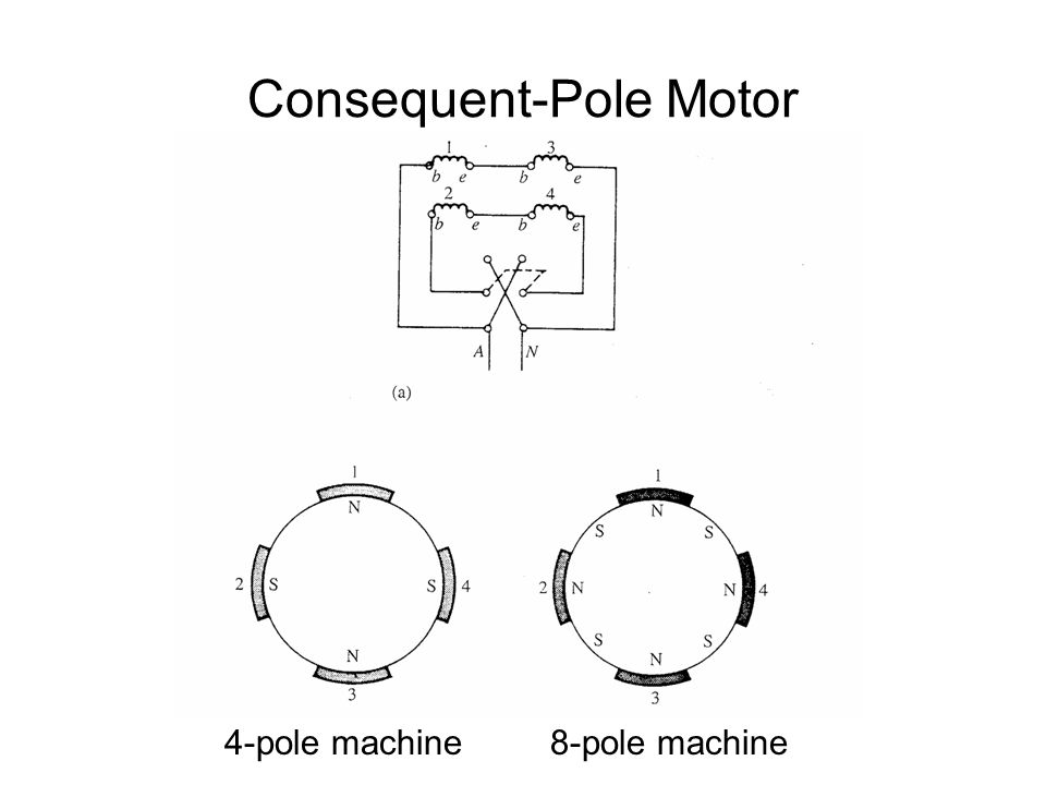 Consequent-Pole Motor