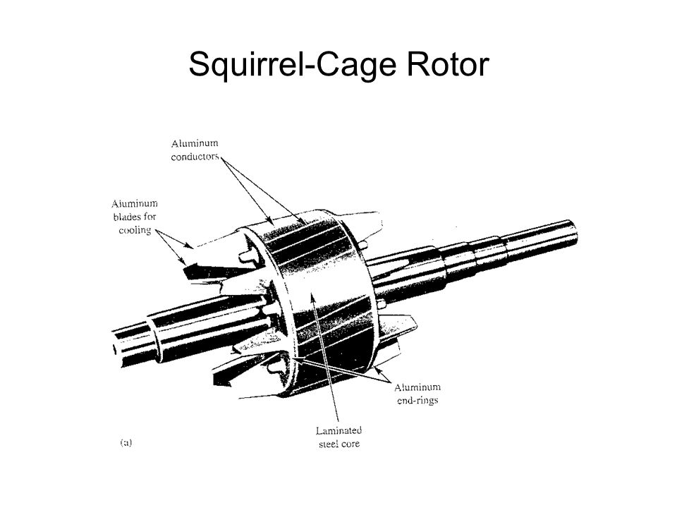 Squirrel-Cage Rotor
