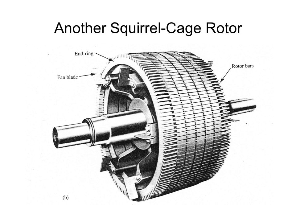 Another Squirrel-Cage Rotor