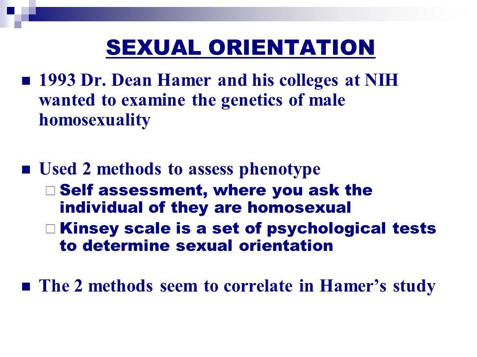 The Genetics Of Sexual Orientation