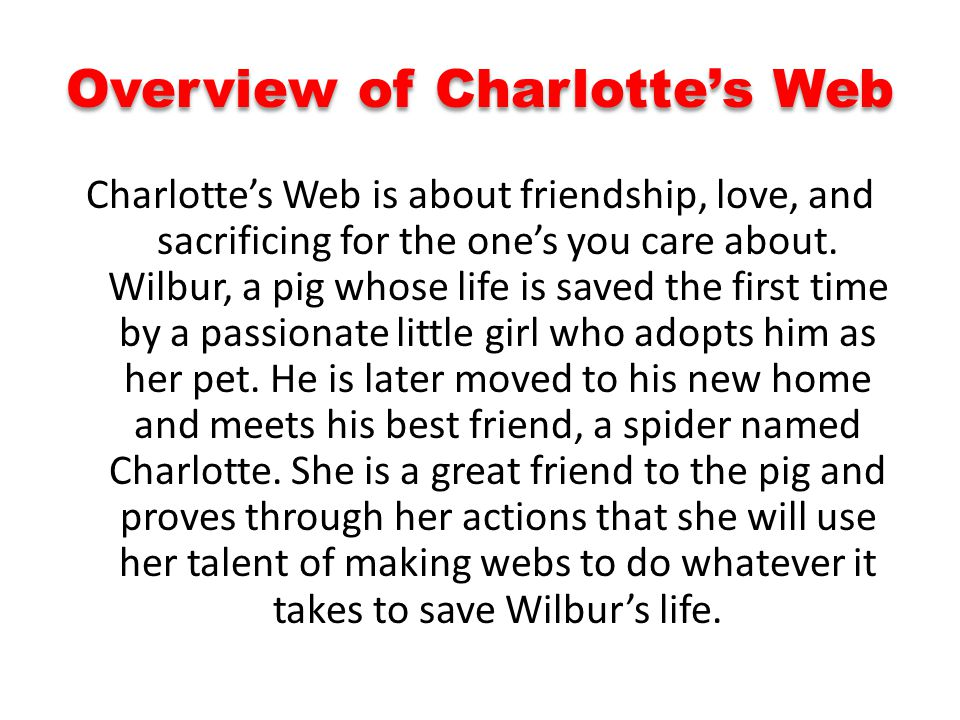 Overview of Charlotte's Web
