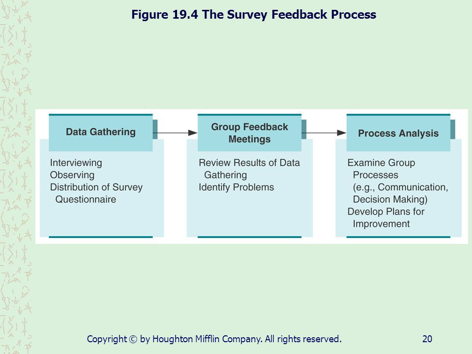 Figure 19.4 The Survey Feedback Process