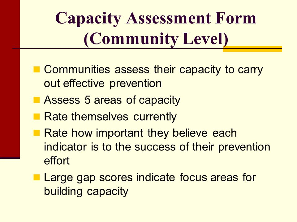 Capacity Assessment Form (Community Level)