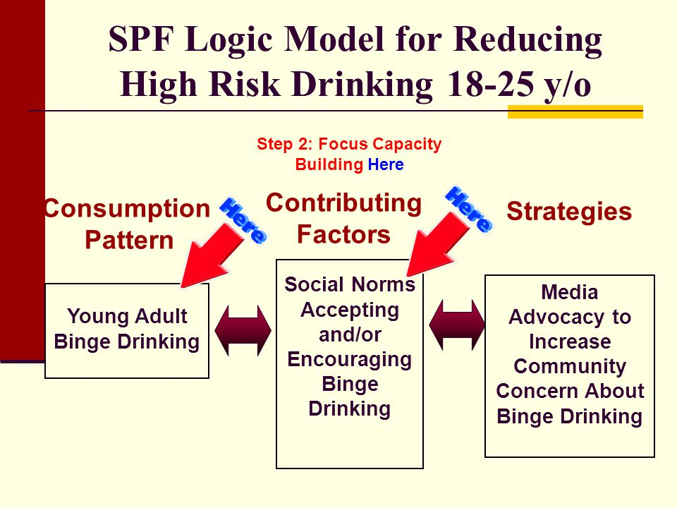 SPF Logic Model for Reducing High Risk Drinking y/o