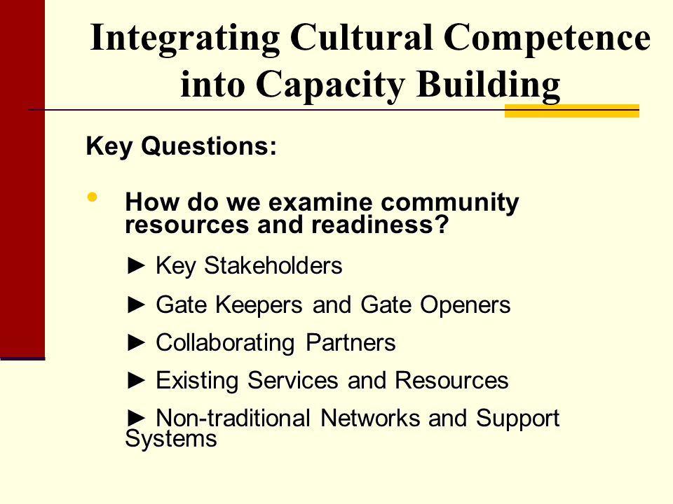 Integrating Cultural Competence into Capacity Building
