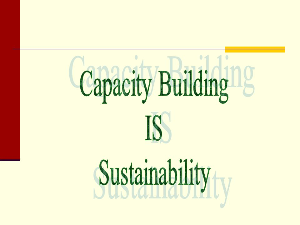 Capacity Building IS Sustainability Building capacity of: