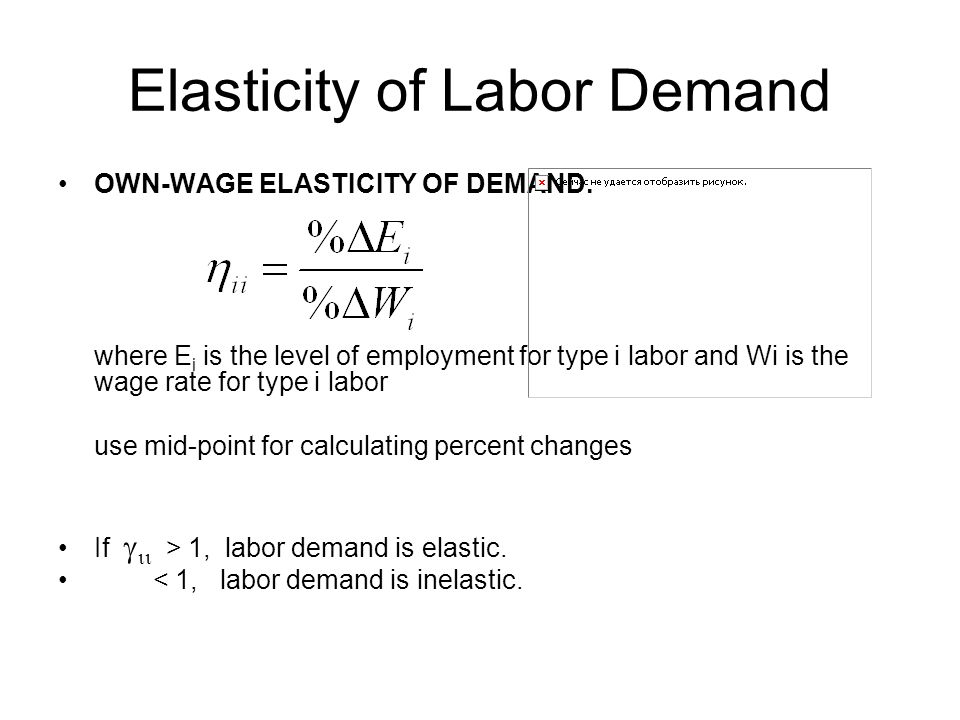 Chapter 4 Labor Demand Elasticities Ppt Download