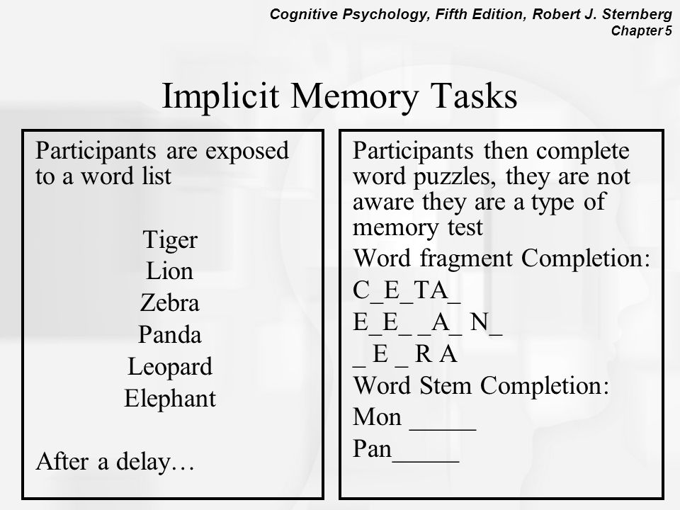 Chapter 5 Memory Models And Research Methods Ppt Video