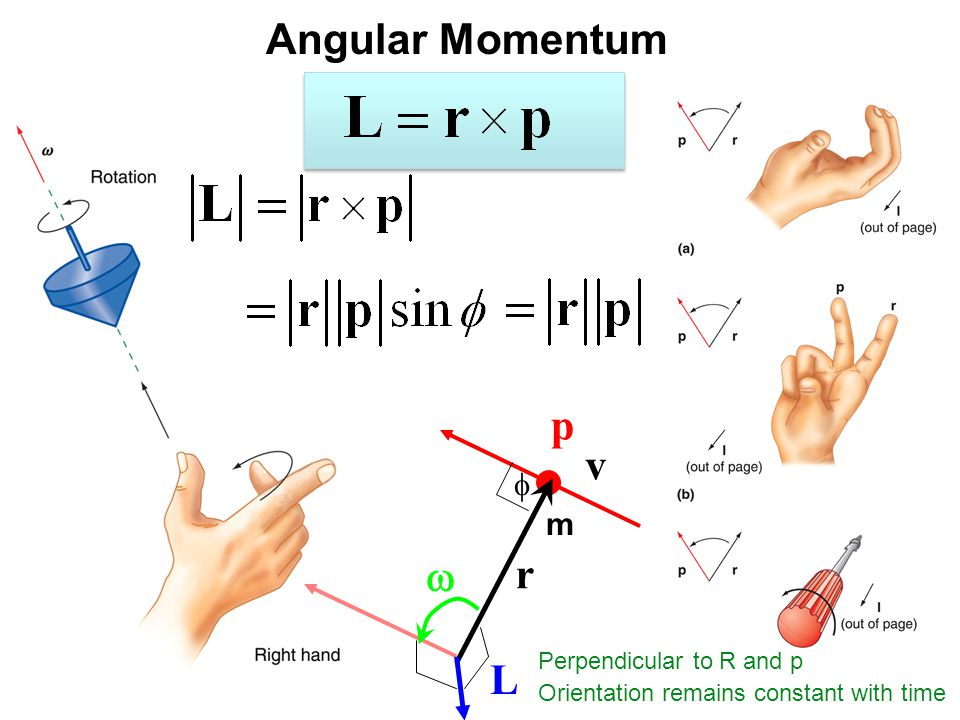 Angular Momentum p v w r L f m Perpendicular to R and p