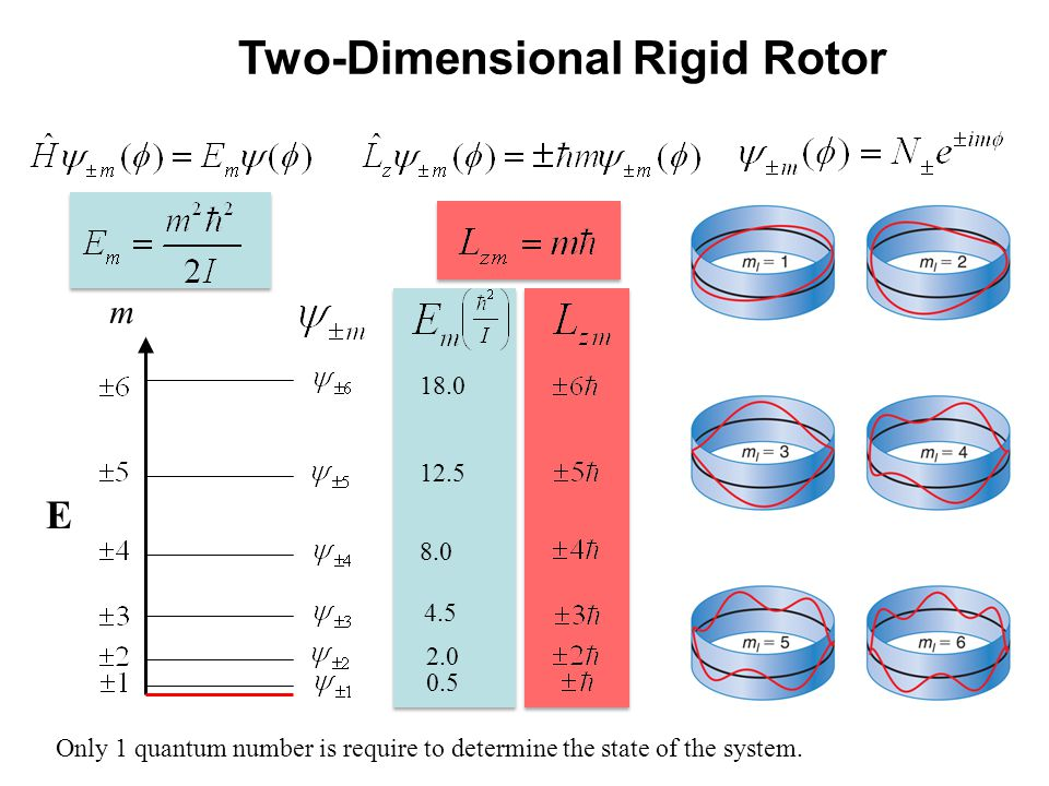 Two-Dimensional Rigid Rotor