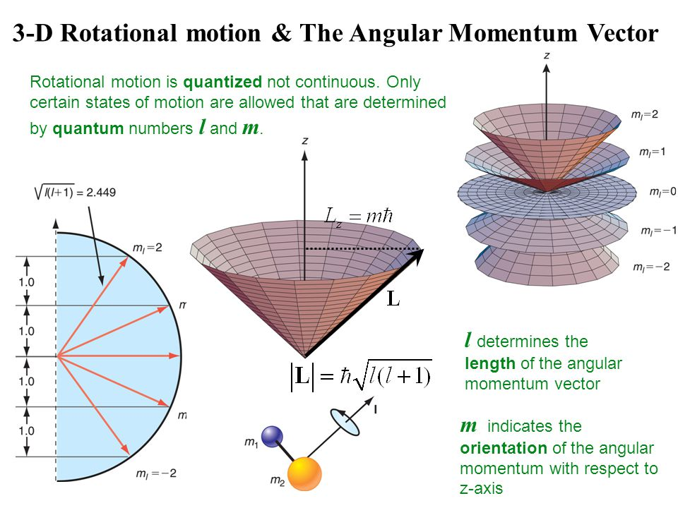 3-D Rotational motion & The Angular Momentum Vector