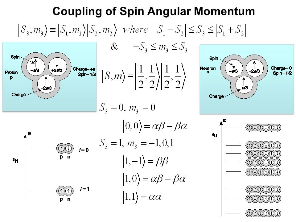 Coupling of Spin Angular Momentum