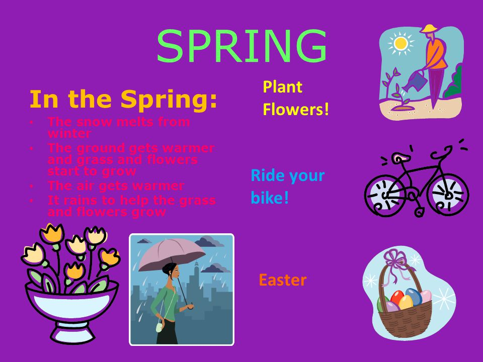 SPRING In the Spring: Plant Flowers! Ride your bike! Easter