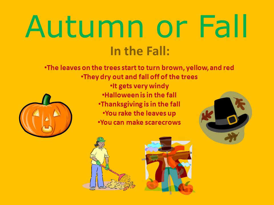 Autumn or Fall In the Fall: