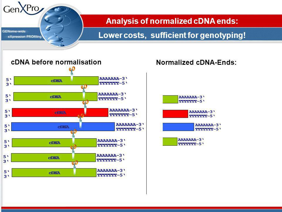 Analysis of normalized cDNA ends: