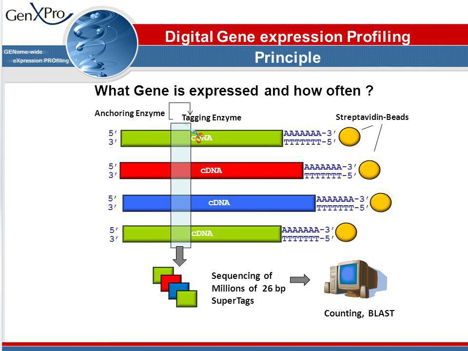 Digital Gene expression Profiling Principle