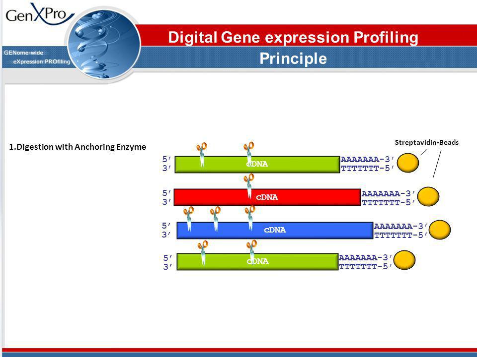 Digital Gene expression Profiling