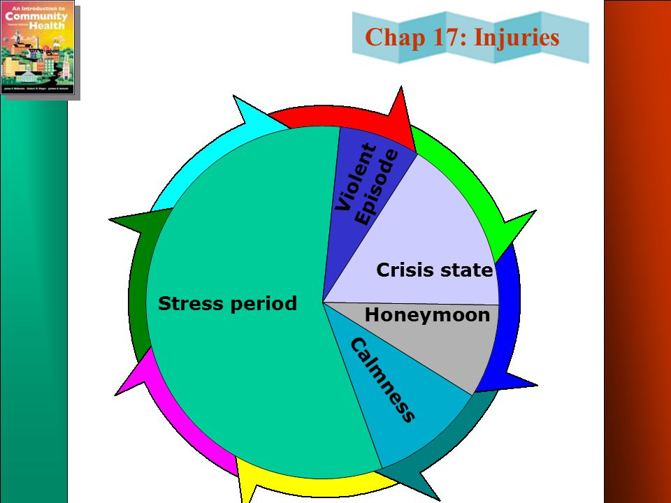 Violent Episode Crisis state Stress period Honeymoon Calmness
