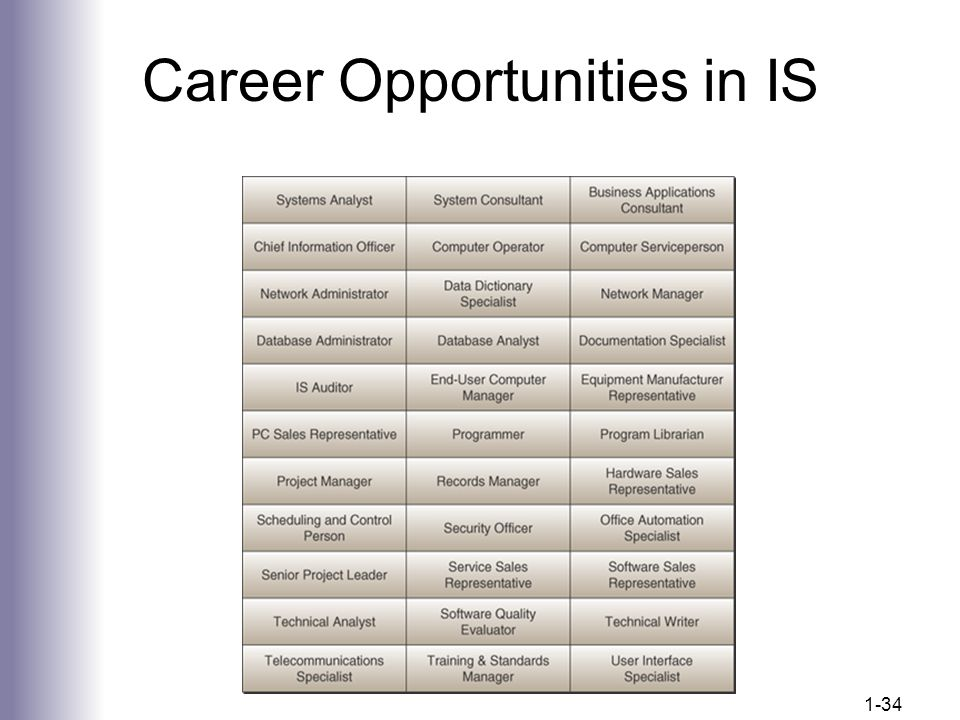 Career Opportunities in IS