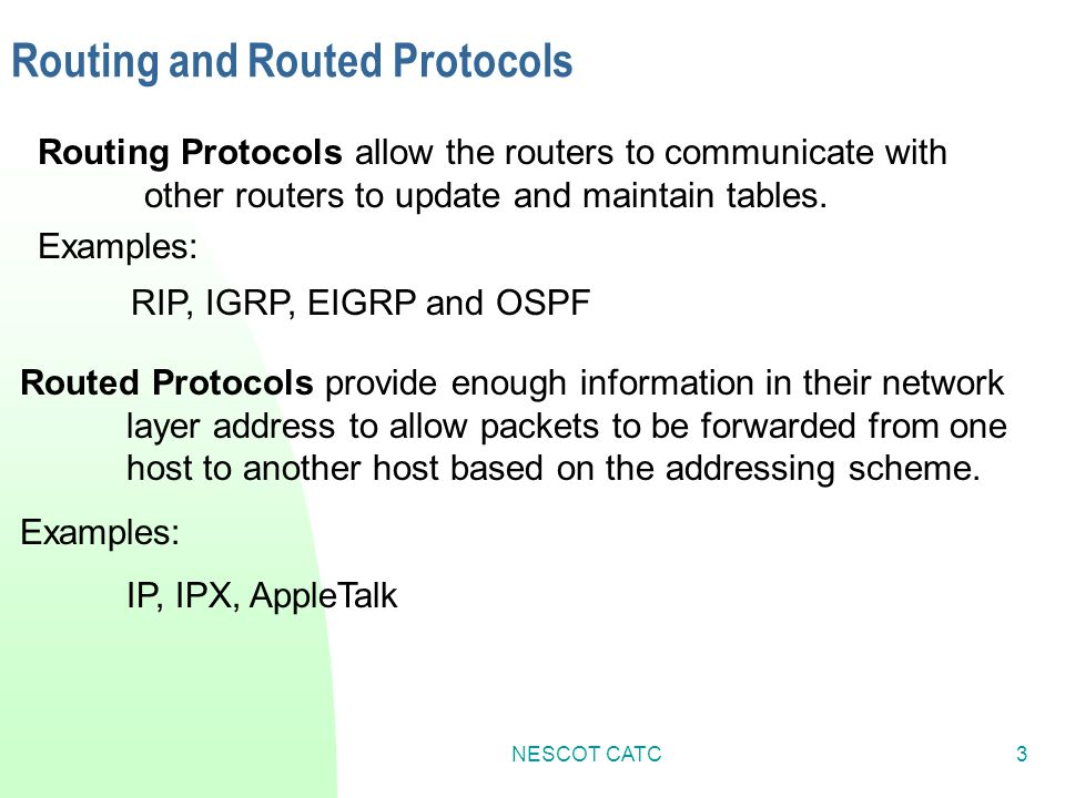 Routing and Routed Protocols