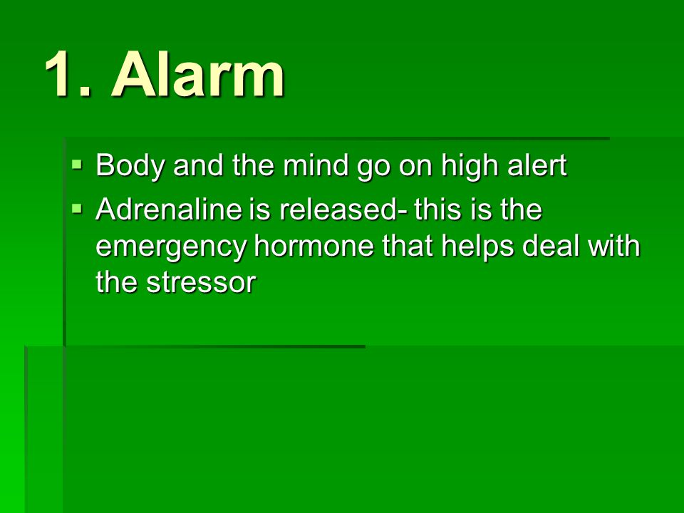 1. Alarm Body and the mind go on high alert