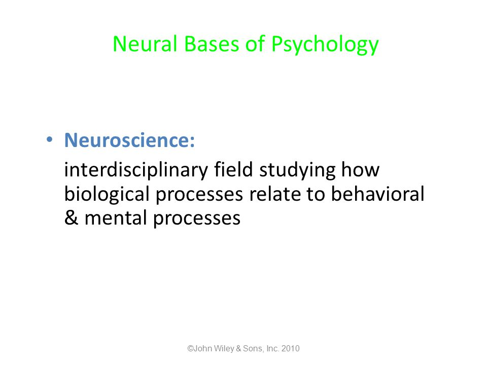 Neural Bases of Psychology