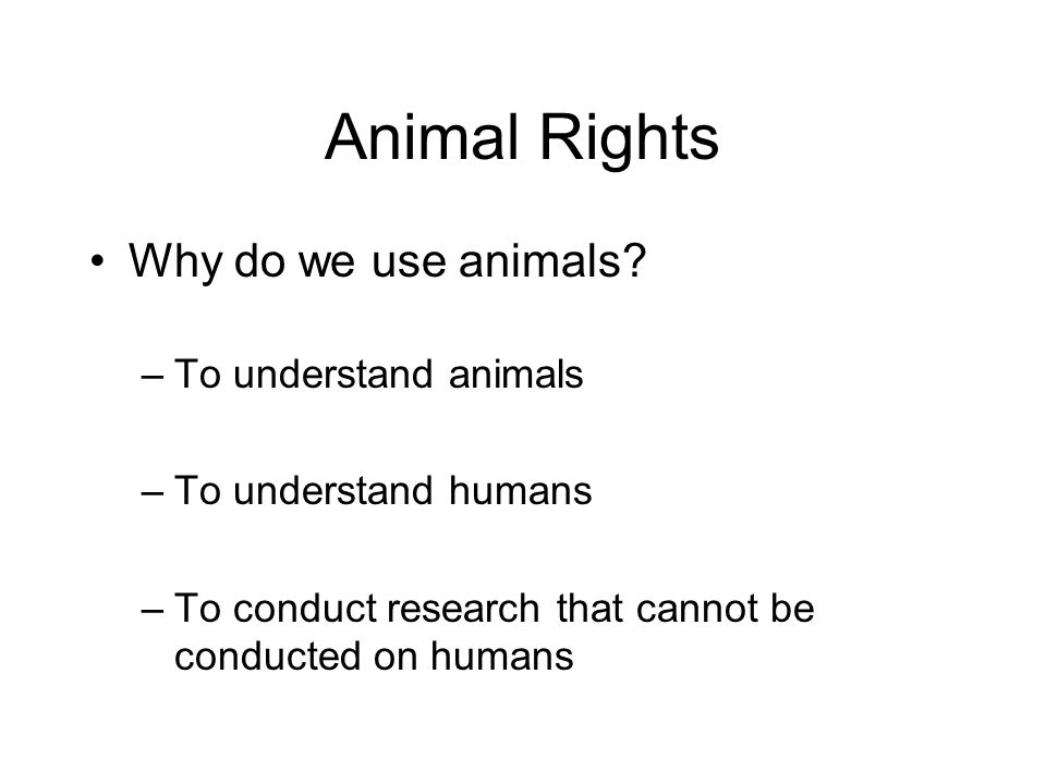 Animal Rights Why do we use animals To understand animals