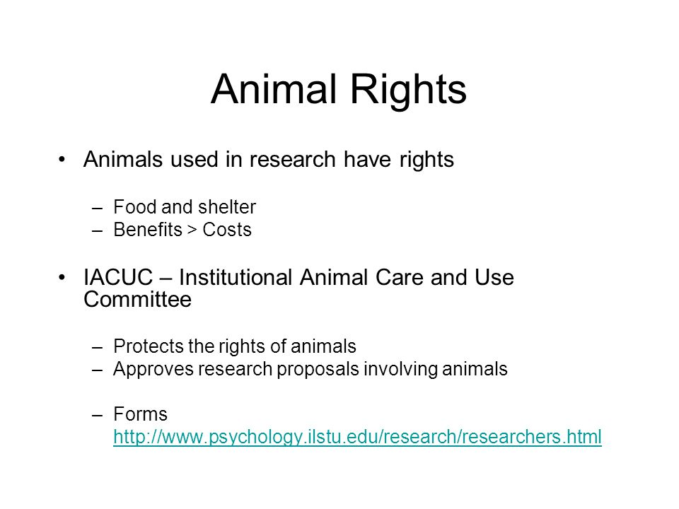 Animal Rights Animals used in research have rights