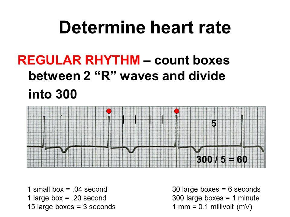 CARDIAC Rhythms Arrhythmias Dysrhythmias Oh, my! - ppt download