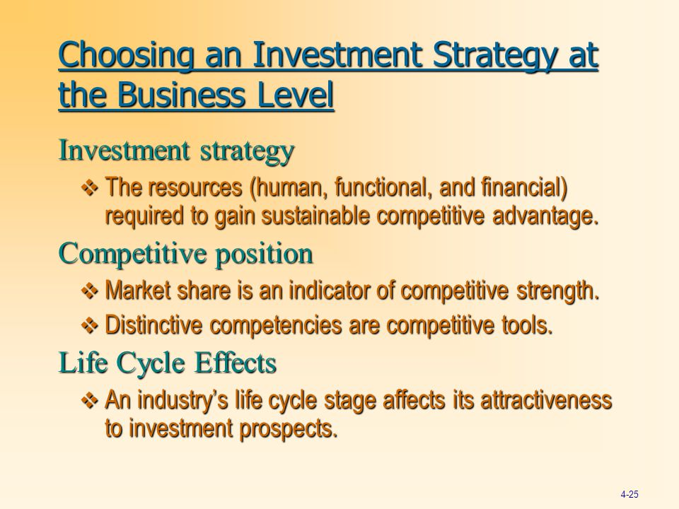 Choosing an Investment Strategy at the Business Level