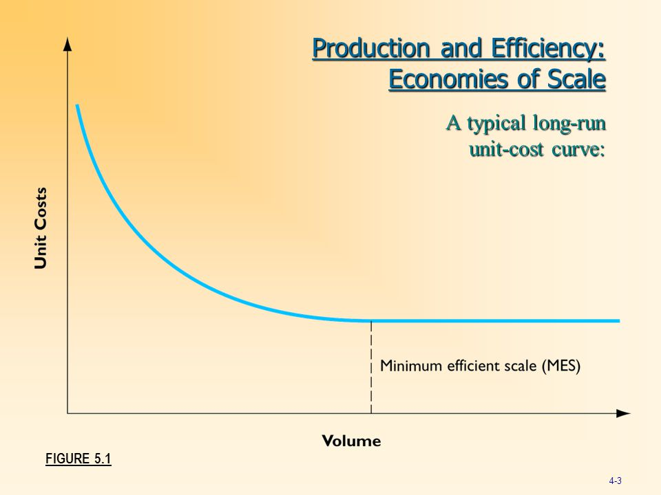 Production and Efficiency: Economies of Scale
