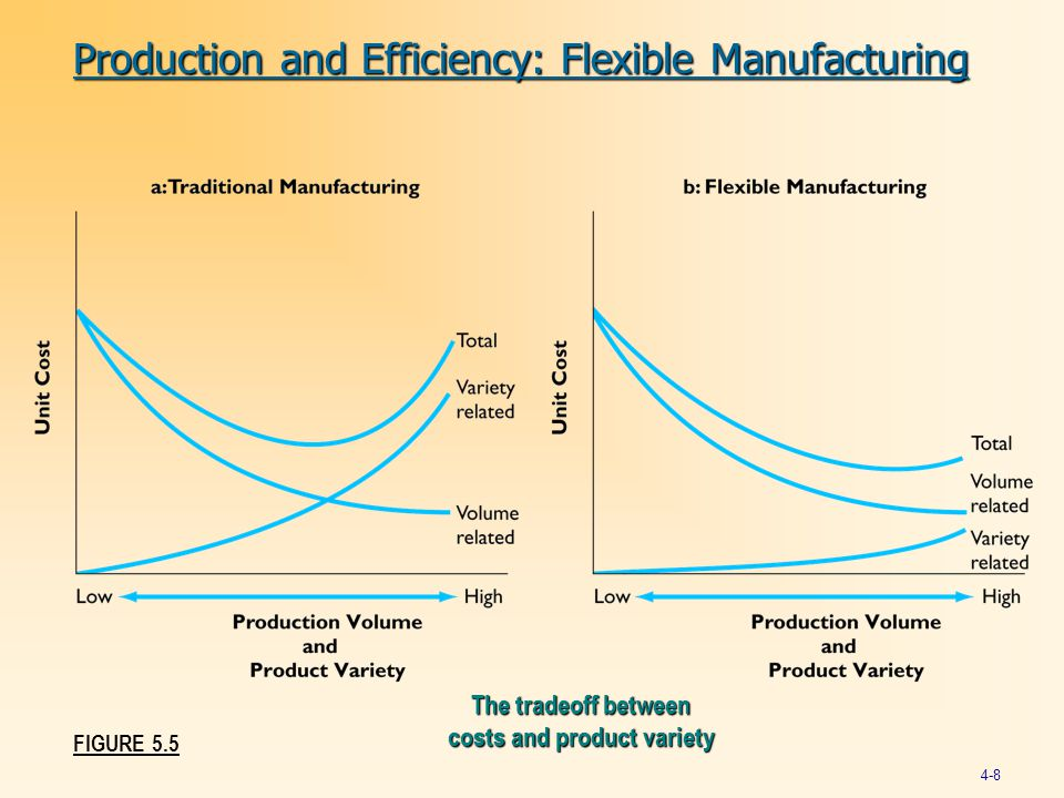 Production and Efficiency: Flexible Manufacturing