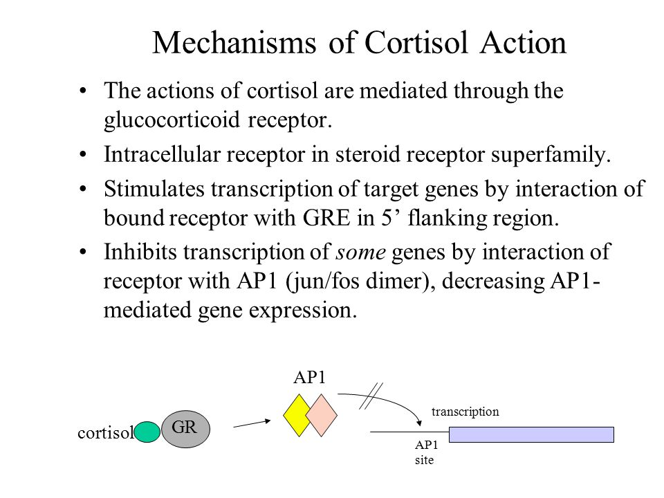 Mechanisms of Cortisol Action