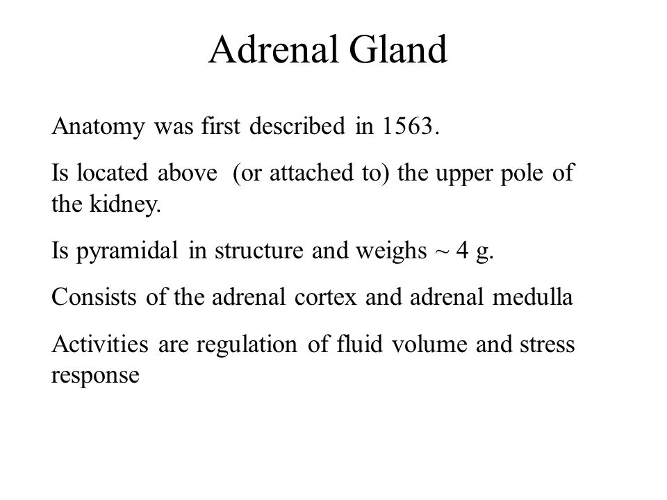 Adrenal Gland Anatomy was first described in 1563.